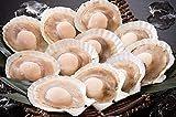 港ダイニングしおそう ホタテ ほたて 殻付き 10枚 北海道産 片貝 帆立