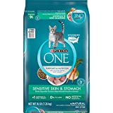 Purina ONE Natural Dry Cat Food, Sensitive Skin & Stomach Formula - 16 lb. Bag