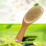 FHC Cepillo de Masaje de Cuerpo con cerdas Suaves, una bañera de hidromasaje con un Cepillo de Mango Largo, Cepillo Herramienta Ducha Celulitis seco Trasera,0703237