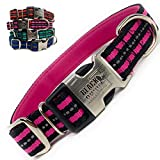 Black Rhino - Classic Striped Adjustable Dog Collar for Small