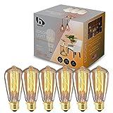 Berelli - 6-Pack Vintage Edison Light Bulb - 60W -120V - 2300K Warm White - E26 Standard Base - Dimmable - 95+ CRI - Incandescent Edison Bulb - ST64 - Flicker Free - Warm Glow (2300K)