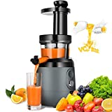 Slow Masticating Juicer Extractor, HAYKE Juicer with Quiet Motor and Brush to Clean Easily,...