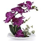 Bouquet d'orchidée artificielle True Holiday avec vase en porcelaine blanche, fleurs artificielles et plantes pour la décoration d'intérieur, fleurs en plastique, réalistes