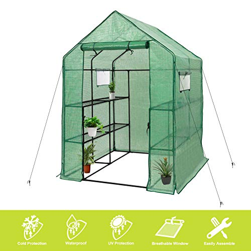 Deluxe Green House 56' W x 56' D x 77' H,Walk in Outdoor Plant Gardening Greenhouse 2 Tiers 8 Shelves - Window and Anchors Include!(Green)