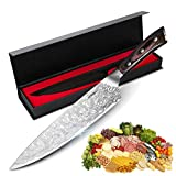 Chef Knife 8 inch, HOKEKI Pro Kitchen Chopping Knife Stainless Steel Meat Vegetables Fruit Chef's Knives with Ergonomic Wood Handle, Gift Box