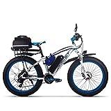 Rich BIT RT022 1000W vélo électrique Smart e-Bike 48V*17Ah Li-Batterie...