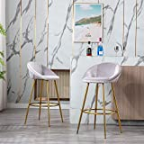 Modern Velvet Bar Stools Set of 2, Accent Upholstered Chairs, Low Round Back Stool with Footrest,Pub Height Home Bar Dining Chairs (Silver Gray)
