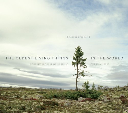The Oldest Living Things in the World (Hardcover)