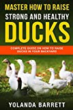 Master How To Raise Strong And Healthy Ducks: Complete Guide On How To Raise Ducks In Your Backyard (First Timers)