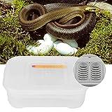 Incubateur d'oeufs de Reptiles, incubateur Durable et incassable...