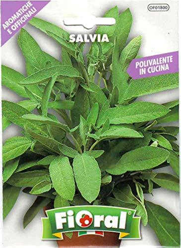 Sementi di piante aromatiche e officinali in bustina ad uso amatoriale (SALVIA)