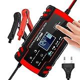3T6B Chargeur de Batterie Intelligent Portable, 12V/4A 24V LCD Écran avec...