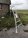 Estate to Garden Tripod Ladder Aluminium Arborist, 1 leg Adjustable 1.8m, 2.4m, 3m 3.3m and 3.6m available (2m)