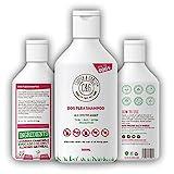 Shampooing anti-puces pour chiens avec peau sensible Traitement...