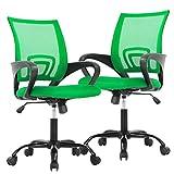 Ergonomic Office Chair Desk Chair Mesh Executive Computer Chair Lumbar Support for Women Men,2 Pack