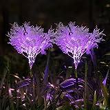 Neporal Garden-Solar-Lights-Outdoor-Decorative, 2...image