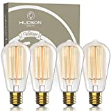Hudson Vintage Incandescent 6W Edison Light Bulbs - 2100K Dimmable Warm 60W Lightbulbs 230 Lumens - E26/27 Base Clear Glass ST64 Style Antique Squirrel Cage Filament Lightbulb (Clear Glass, 6 Pack)