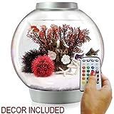 biOrb Classic 15 Liter Silver Aquarium w/MCR Lighting and Red Forest Decor Set Bundle