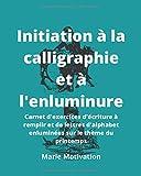 Initiation à la calligraphie et à l'enluminure: Carnet d'exercices...