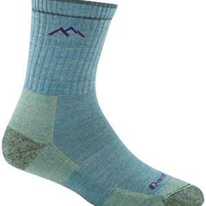 Darn Tough Heady Stripe Micro Crew Light Cushion Sock – Men's
