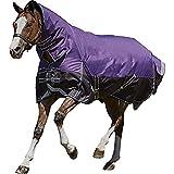 Weatherbeeta - Couverture & couvre-cou mi-légère COMFITEC PLUS DYNAMIC - Cheval (125 cm) (Violet/noir)