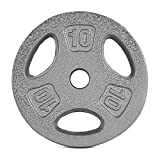 CAP Barbell Standard 1-Inch Grip Weight Plates, Single, Gray (10 Pound (Set of 4))