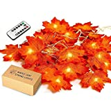 Maple Leaves String Light, JamBer 8 Blinking Modes with Remote/10Ft/Waterproof 20LED Garland Fairy...