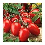 Organic Roma Tomato Seeds, 300+ Premium Heirloom Seeds!, 1 Selling Tomato Hot Pick & ON SALE!, (Isla's Garden Seeds), Non Gmo Organic, 85% Germination, Highest Quality Seeds, 100% Pure