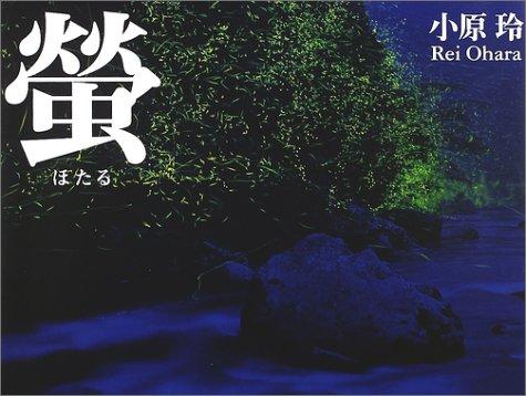 蛍―light of a firefly