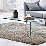 Premium Tempered Glass Coffee Table,Clear Coffee Table, Small Modern Coffee Table for Living Room,Match Well with Rug (40x20x14)