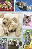 Trends International Keith Kimberlin - Puppies and Kittens Collage, 22.375' x 34', Unframed Version