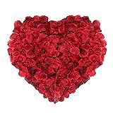 Naler Décorations de la Fête 2000pcs Pétales de Rose de Soie Artificielle pour Noël, Fleurs de Mariage, Confettis, Table Scatter Rouge