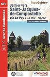 Sentier vers Saint-Jacques-de-Compostelle via Le Puy: Le Puy - Aubrac - Conques - Figeac