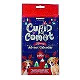 Luxury Advent Calendar for dogs