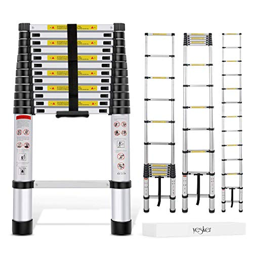 3. Generic Aluminum Telescoping Ladder