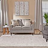 Ophanie Modern Boho Chic Area Rug Carpet, Thick Area Rugs for Living Room, Bedroom, Home Office, 5' x 8', Beige/Grey