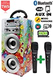 Dynasonic - Enceinte Bluetooth Portable karaoké 10W, 2 micros Inclus,...