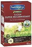 Fertiligene Gazon Super Regarnissant, 100m²
