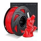PETG 3D Printer Filament, PETG Filament 1.75mm, Dimensional Accuracy +/- 0.02 mm, 1KG(2.2lb) Spool (PETG-Red)