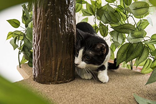 On2 Pets Cat Tree with Leaves Made in USA, Large Square Cat Condo & Cat Activity Tree in EverGreen