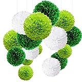 MAKFORT Pompon Vert Pompon Papier Soie Papier Fleur Pompon Boule à Suspendre...
