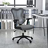 Flash Furniture High Back Designer Gray Mesh Executive Swivel Ergonomic Office Chair with Adjustable Arms (Misc.)