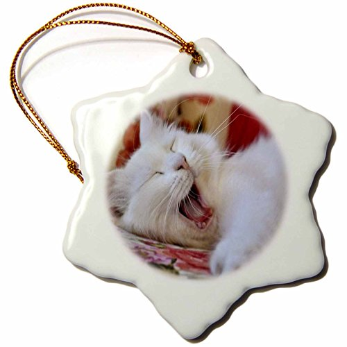 3dRose orn_52676_1 Turkish Van Cat Yawning-Lol, Laughing Out Loud, White Cat, Van Kedisi-Snowflake Ornament, Porcelain, 3-Inch