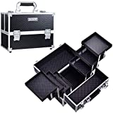 Frenessa Makeup Train Case 12 inch Large Portable Cosmetic Case - 6 Tier Trays Professional Makeup Storage Organizer Box Make Up Carrier with Lockable keys Travel Case for Women and Girls - Black