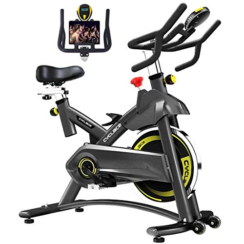 Cyclace Exercise Bike Stationary 330 Lbs Weight Capacity-...