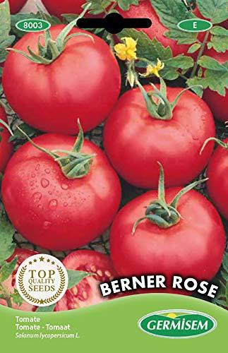 Germisem Berner Rose Semillas de Tomate 0.5 g