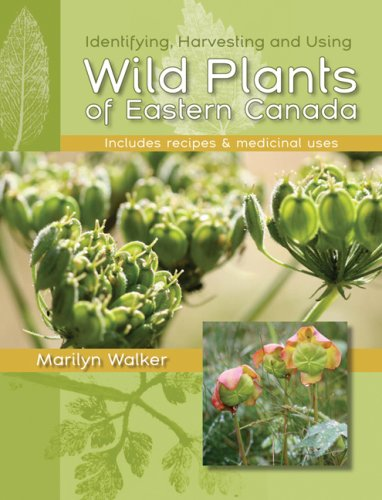 Wild Plants of Eastern Canada
