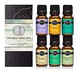 Tranquil Set of 6 Premium Grade Fragrance Oils - Vanilla, Cucumber Melon, Lavender, Amber, Bamboo, Ocean Breeze - 10ml