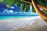 GREAT ART Papier Peint – Beach Palms – Décoration Murale Caraibes Dream Beach Bay Paradise Nature Île Palms Tropics Blue Sky Summer Photo Papier Peint Photo (210x140 cm)