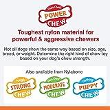 Strukturierter Nylabone Dura Chew Rindfleisch-Jerky-Power-Chew – Kauknochen für extrem stark kauende Hunde – groß – für Hunde bis 23 kg - 3